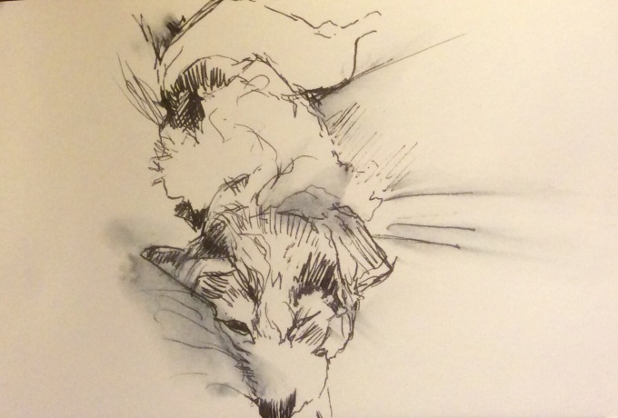 Pooch on bed, Pen and Ink, 5x11 cm