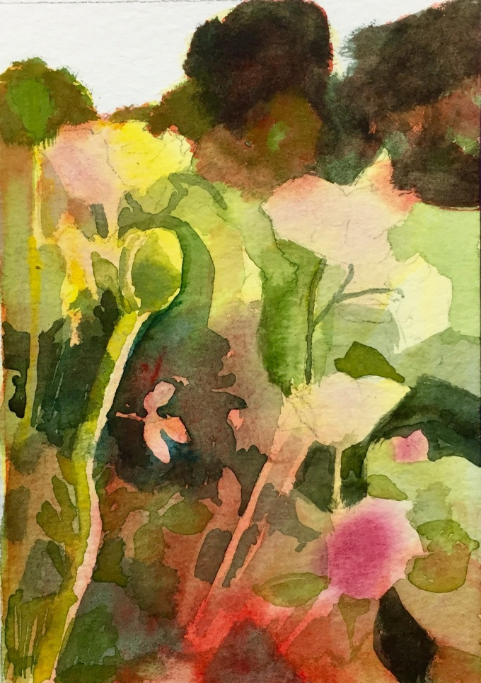 Cutting Garden, Watercolour, 15x 11 cm