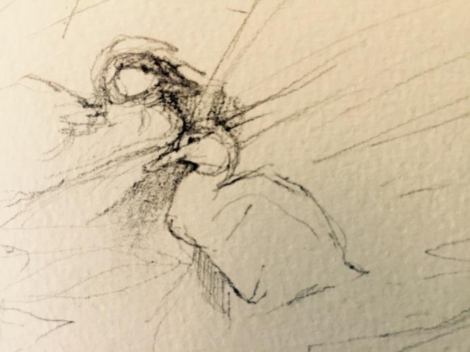 Ducklings, Watercolour, 12x5 cm