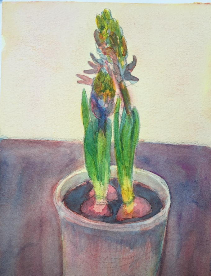 Hyacinths, Watercolour, 22x 15 cm