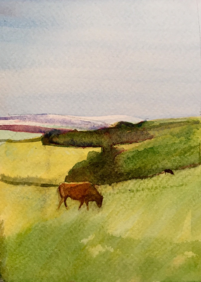 New Year Cows, Watercolour, 12 x17cm