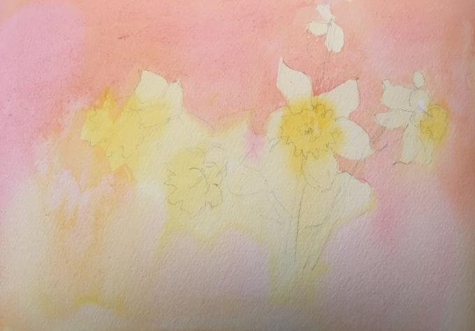 Spring Daffs, watercolour sketch.