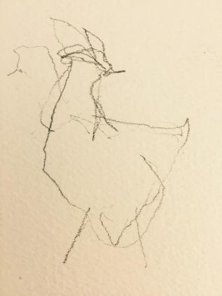 More Hen